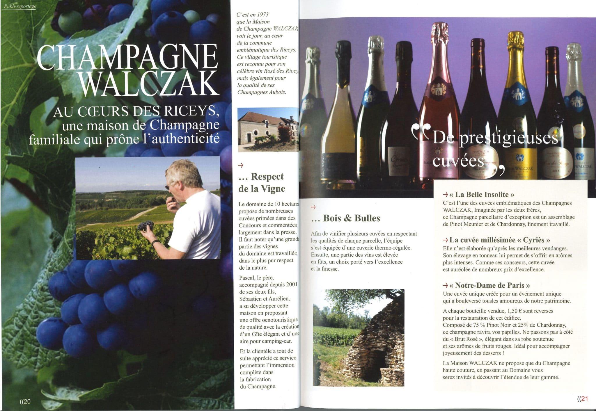 Article vins saveurs & co