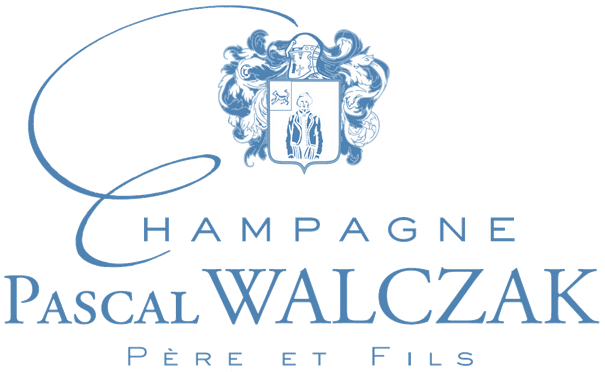Logo pied de page bleu Pascal Walczak
